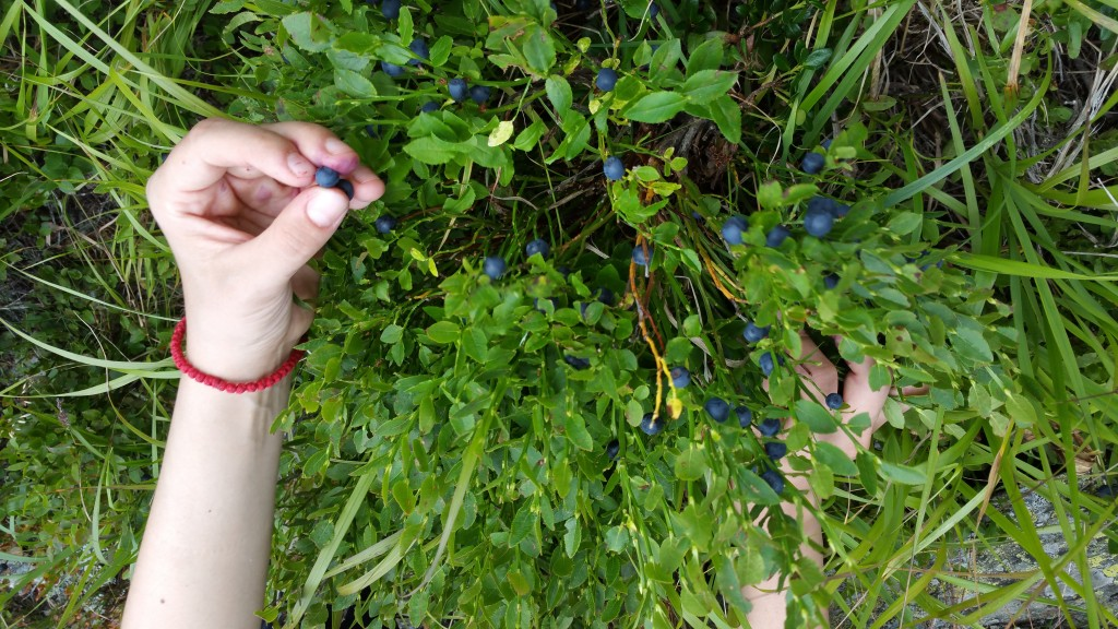 fructe de afin